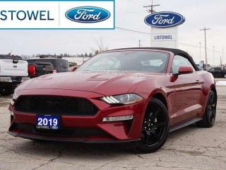Used 2019 Ford Mustang 3.15 LIMITED SLIP | NAVIGATION | BLACK ACCENT PACKAGE for sale in Listowel, ON