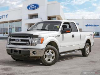 Used 2014 Ford F-150 XLT for sale in Winnipeg, MB