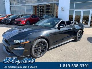 Used 2019 Ford Mustang ECOBOOST CONVERTIBLE for sale in Shawinigan, QC