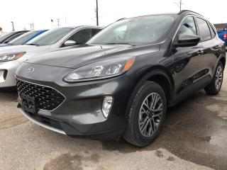 New 2020 Ford Escape SEL for sale in New Hamburg, ON