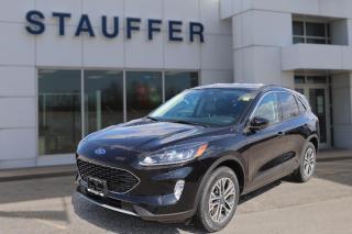 New 2020 Ford Escape SEL for sale in Tillsonburg, ON