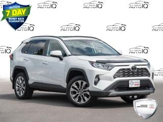 Used 2019 Toyota RAV4 Limited Memory Seats | Navigation | Rear Heated Seats for sale in Welland, ON