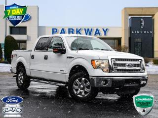 Used 2014 Ford F-150 XLT for sale in Waterloo, ON