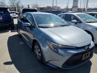 New 2020 Toyota Corolla Hybrid HYBRID MODEL!! for sale in Cobourg, ON