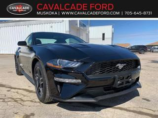 New 2020 Ford Mustang EcoBoost for sale in Bracebridge, ON