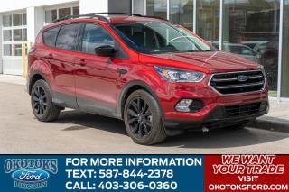 Used 2017 Ford Escape SE 201A/SPORT/SYNC 3/SYNC CON/NAV/2.0L ECO/REAR CAM for sale in Okotoks, AB