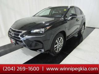 Used 2017 Lexus NX 200t NX200T *Accident Free!* for sale in Winnipeg, MB