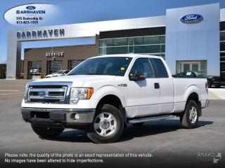 Used 2013 Ford F-150 XLT for sale in Ottawa, ON