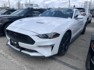 New 2020 Ford Mustang EcoBoost 19in RIMS | NAVIGATION | REAR CAMERA for sale in Kitchener, ON