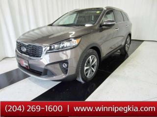 Used 2019 Kia Sorento EX Premium *2 In Stock! Reduced To Sell Fast!* for sale in Winnipeg, MB