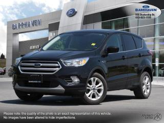 Used 2019 Ford Escape SE for sale in Ottawa, ON