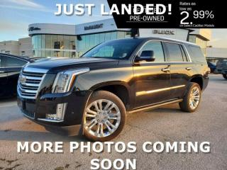 Used 2017 Cadillac Escalade Platinum 4WD | Massaging Seats | 3 DVDs for sale in Winnipeg, MB