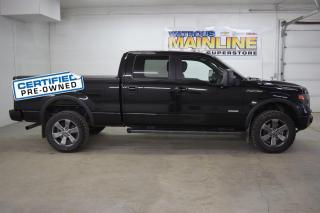 Used 2014 Ford F-150 for sale in Watrous, SK