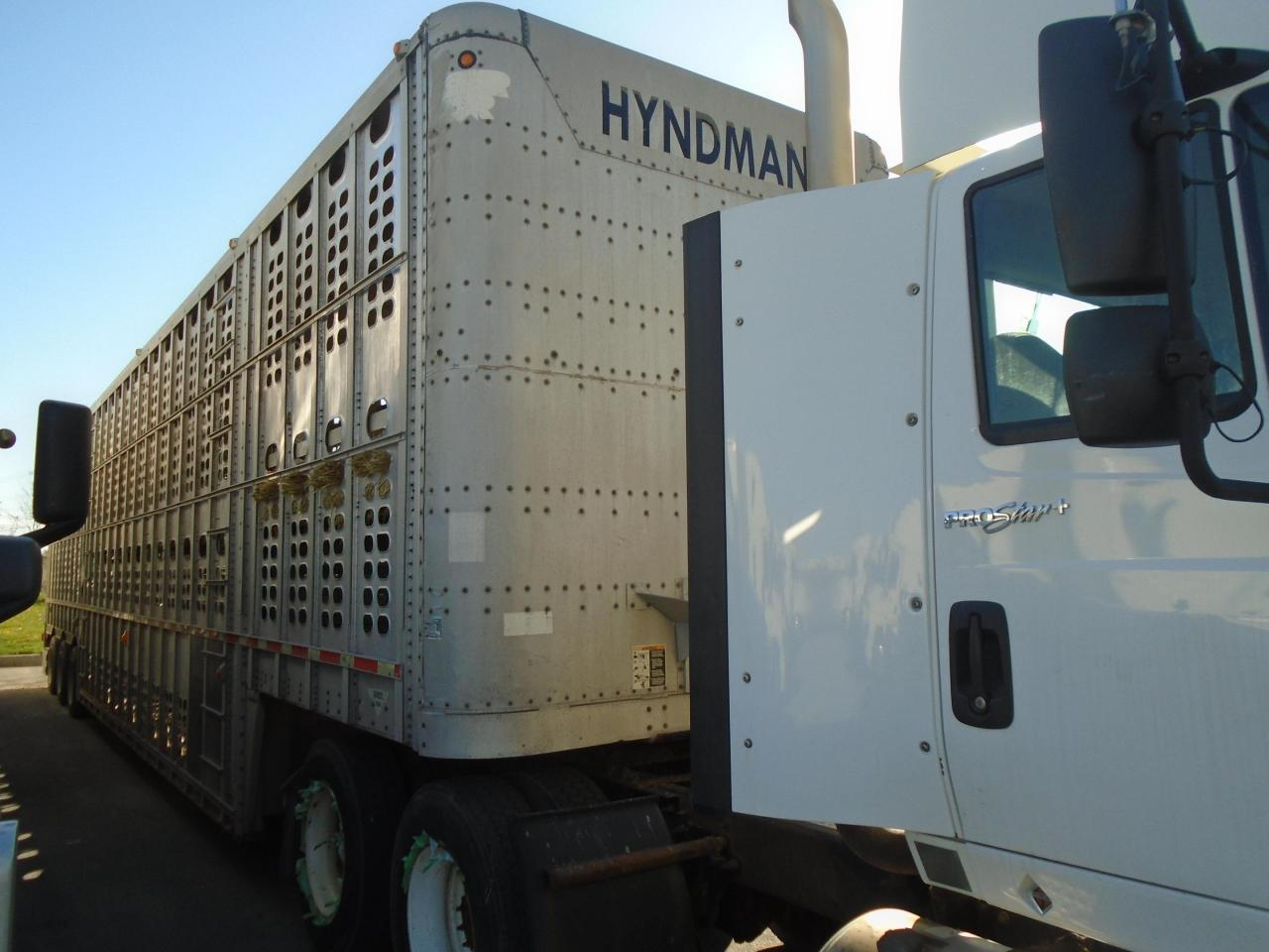 1996 Wilson Cattle Livestock Trailer