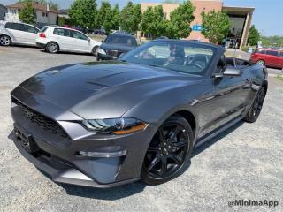 Used 2019 Ford Mustang EcoBoost haut niveau décapotable,310hp for sale in Drummondville, QC