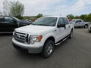 Used 2010 Ford F-150 XLT for sale in St. Thomas, ON