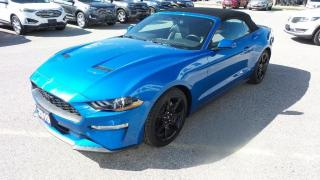 Used 2019 Ford Mustang EcoBoost for sale in New Hamburg, ON