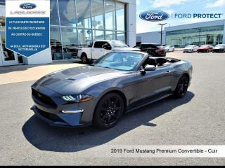 Used 2019 Ford Mustang EcoBoost Premium Convertible for sale in Victoriaville, QC