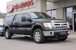 Used 2013 Ford F-150 XLT for sale in Cobourg, ON