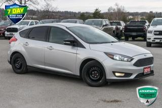 Used 2016 Ford Focus SE for sale in Barrie, ON
