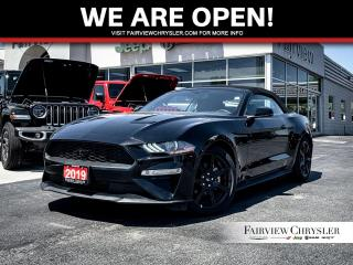 Used 2019 Ford Mustang EcoBoost Premium l HEATED/COOLED LEATHER l NAV l for sale in Burlington, ON