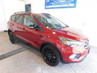 Used 2019 Ford Escape Titanium NAVI SUNROOF for sale in Listowel, ON