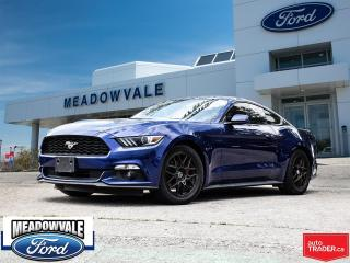 Used 2016 Ford Mustang EcoBoost for sale in Mississauga, ON