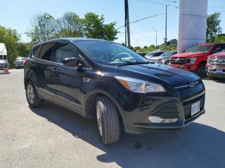 Used 2016 Ford Escape SE for sale in Kingston, ON