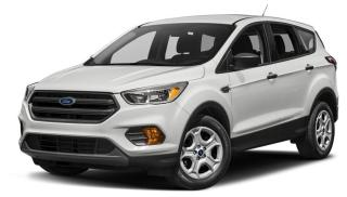 Used 2019 Ford Escape SEL for sale in Newmarket, ON