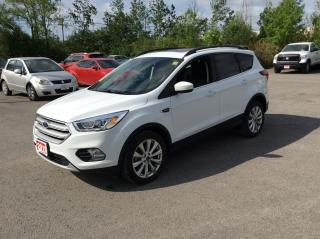 Used 2019 Ford Escape SEL 4WD - LEATHER - MOONROOF! for sale in Ottawa, ON