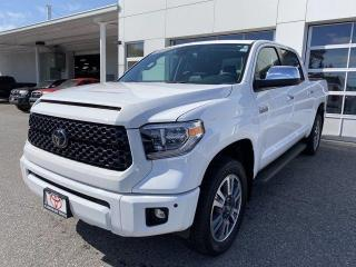 Used 2020 Toyota Tundra 4x4 Crewmax Platinum for sale in North Bay, ON