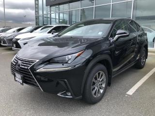 New 2020 Lexus NX 300h Test Drive for sale in North Vancouver, BC