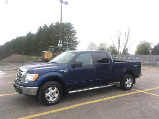 Used 2010 Ford F-150 XLT for sale in Toronto, ON