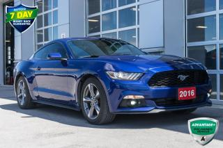 Used 2016 Ford Mustang EcoBoost Premium ECOBOOST PREMIUM PKG for sale in Innisfil, ON