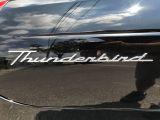 2002 Ford Thunderbird ROADSTER