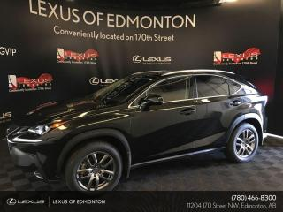 New 2020 Lexus NX 300 Premium Package for sale in Edmonton, AB
