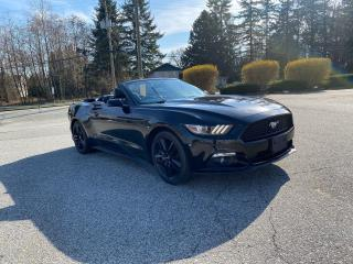 Used 2016 Ford Mustang Premium for sale in Surrey, BC