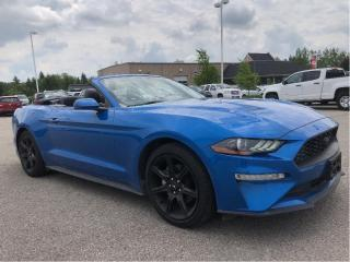 Used 2019 Ford Mustang EcoBoost Premium Convertible for sale in Guelph, ON