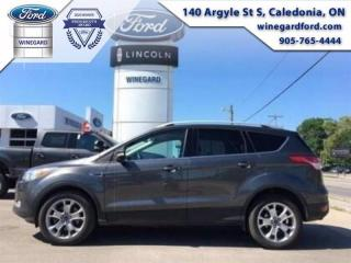 Used 2015 Ford Escape Titanium 4WD | Bluetooth, Leather, Moonroof, Navig for sale in Caledonia, ON