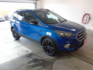 Used 2018 Ford Escape Titanium for sale in Owen Sound, ON