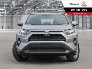 New 2020 Toyota RAV4 XLE STANDARD PKG W/CARGO LINER for sale in Winnipeg, MB