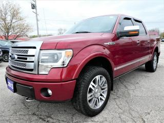 Used 2013 Ford F-150 Platinum 5.0L | Cooled Seats | Navigation | Sunroof for sale in Essex, ON
