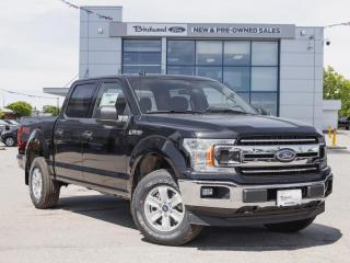 New 2020 Ford F-150 XLT FX4 | TRAILER TOW PKG | TAILGATE STEP for sale in Winnipeg, MB