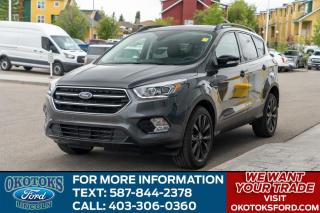 Used 2019 Ford Escape Titanium SPORT PACKAGE/ROOF/NAV/HTS SEATS/HTD WHEEL/PARK ASSIST/ for sale in Okotoks, AB