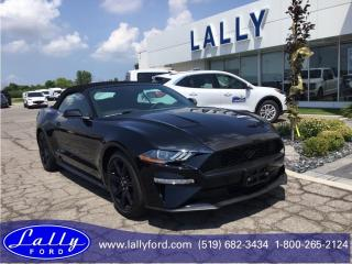 New 2019 Ford Mustang EcoBoost for sale in Tilbury, ON