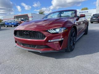 Used 2019 Ford Mustang EcoBoost Premium - NAV, HEAT/COOL LEATHER, AUTO! for sale in Kingston, ON