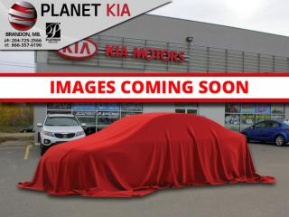 New 2020 Kia NIRO PLUG-IN Hybrid EX Premium - Sunroof for sale in Brandon, MB