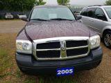 Photo of Burgundy 2005 Dodge Dakota