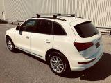 Photo of Snow White 2013 Audi Q5