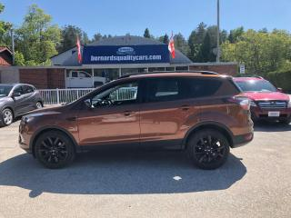 Used 2017 Ford Escape SE for sale in Flesherton, ON